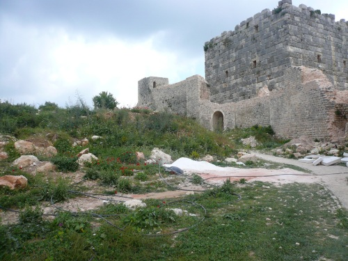 Saladin's castle