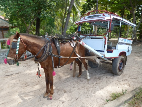 The only transport on Gili Meno