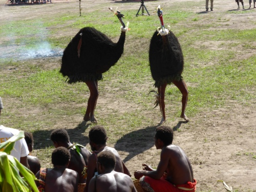 Then there was the cassowary/emu dance