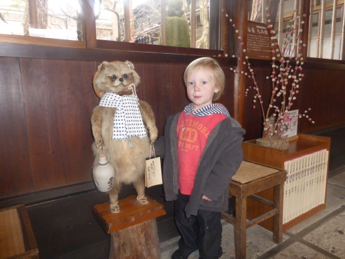 At the Kusakabe Heritage House, our little one met up with a racoon.