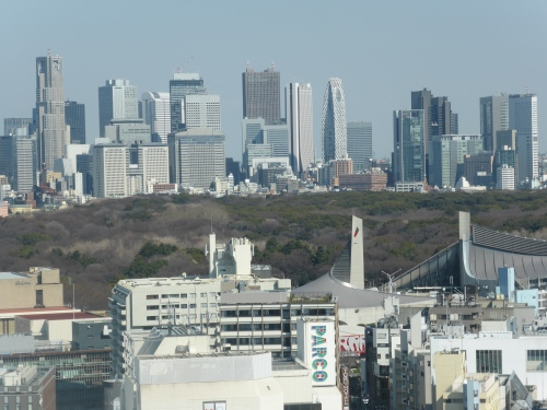 From the 23rd floor of the hotel in Shibuya, across the park you can see  Shinjuku another of the many metro centres